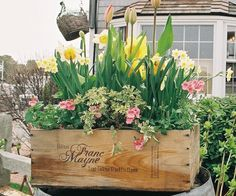 Five ways to make a beautiful container garden for spring - Chatelaine
