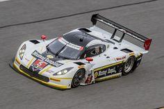 Filipe Albuquerque em destaque nos testes oficiais das 24h de Daytona