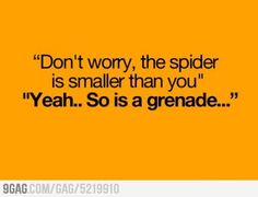 i'm telling Ken this the next time he argues for me to kill spiders myself..