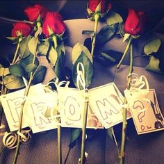 Cute Promposal with roses and tags spelling prom. So cute❤️ One of my faves! - Cute Promposal with roses and tags spelling prom. So cute❤️ One of my faves! Asking To Homecoming, Homecoming Proposal, Bridal Musings, Prom Invites, Invitations, Will Turner, Cute Promposals, Cute Prom Proposals, Dance Proposal