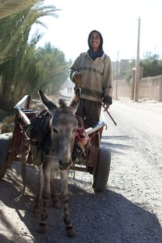 On the Road….Palmeraie, Skoura, Morocco