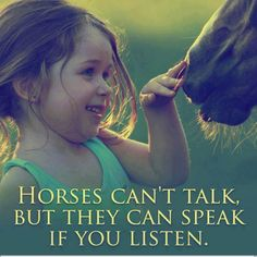 Horses can't talk, but they can speak if you listen