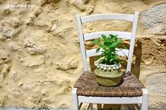 Summer is here! #greenery #plants #decoration #basket