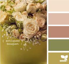 Ivory, rose, terra cotta, med. green, asparagus.