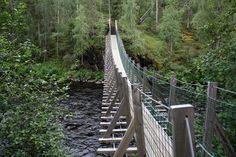 Oulangan kanjonin päiväreitti, 6 km, vie ihastelemaan maisemia jyrkkäseinäiselle kalliorotkolle. Finland Travel, Travel Tips, Places To Go, Hiking, Tours, Landscape, Bridges, Hammock, Outdoor