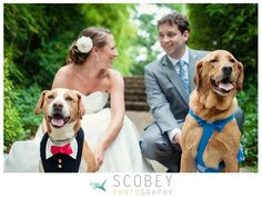 Outdoor Wedding with Dogs | Event Coordinator and Design:  Simply Charming Socials / Ceremony & Reception Venue: State Botanical Garden of Georgia / Photography: Scobey Photography