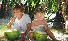 Kokoswasser ist in exotischen Gefilden ein altbekannter isotonischer Durstlöscher. Die junge grüne Kokosnuss wird mit der Machete gekappt und mit einem Strohhalm ausgetrunken. Inzwischen gibt es die jungen Kokosnüsse auch im europäischen Handel – oder aber man kauft sich das Kokoswasser im Tetrapack. Kokoswasser – so die kursierenden Informationen – soll insbesondere vier Zwecke erfüllen: Es soll ein gesunder Durstlöscher sein, es soll viele Vitamine enthalten, es s...