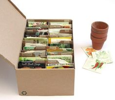 DIY Seed Storage Box: Seed organization from recycled shoe boxes Gardening For Beginners, Gardening Tips, Flower Gardening, Seed Storage, Cardboard Box Crafts, Decorated Flower Pots, Pumpkin Flower, Recycling, Garden Journal