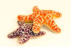 Needle felted star fish by Yvonne Herbst.