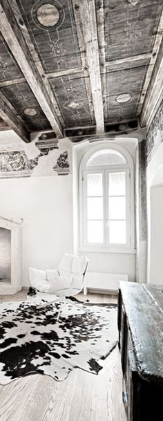= decorative ceiling and hide = old and new