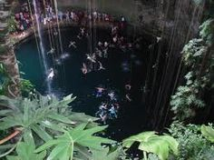 cenote swimming tulum - Google Search