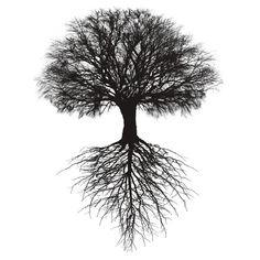 Tree of Life #tree #trees #shirt #tshirt