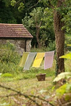 Country Living - clothes line