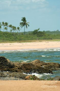 beach, Ilheus, Bahia, Brazil