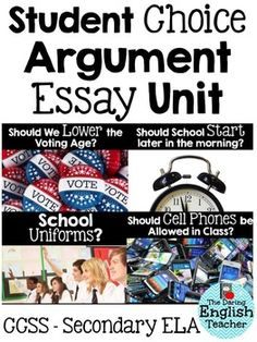 essay topics for high school students argumentative