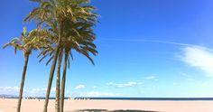 Marina Real y playas de Valencia