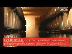 ▶ 11 - Crianza del vino -