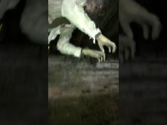 Basement of The Dead Haunted House: Halloween Haunt Productions Basement of The Dead Haunted House Home Haunted House Vlogs Reviews Haunt…