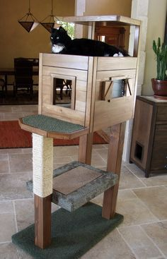 make vinny a cat tree with litter box on bottom and food somewhere also