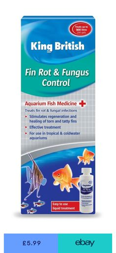 Methylene Blue Aquarium 100ml Effective Against A Range Of Fungal