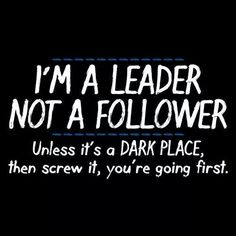 I'm a leader not a follower....Unless it's a dark place, then screw it, you're going first.