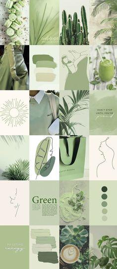 Pastel green aesthetic wallpaper