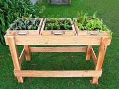 Here's a clever idea for growing salad greens and herbs year round – a salad bench that can easily be positioned on a sunny deck, a patio – anywhere you like, really. It can also be used for sowing your cut flower seeds, raising them to seedling stage, before they're ready to plant out. Head to the Sweet Living website for step-by-step instructions and photos.