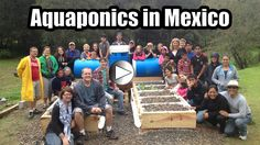Mexico Aquaponics Adventure! The video is out of the aquaponics fish farm we just completed at an the Casa Hogar ALFA orphanage in Mexico http://www.youtube.com/watch?v=Frt9g24hsYQ