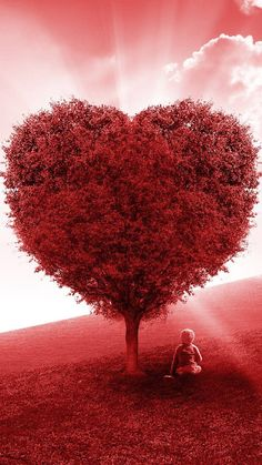 Red Love Heart Tree wallpaper by pramucc - ff - Free on ZEDGE™ Wallpaper Iphone Love, Framed Wallpaper, Disney Phone Wallpaper, Heart Wallpaper, Tree Wallpaper, Flower Wallpaper, Cherry Blossom Wallpaper, Love Png, Red Love Heart