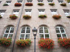 So sieht eine Fensterfront doch gleich viel netter aus.Gesehen in Nürnberg.