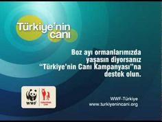 www.turkiyenincani.org