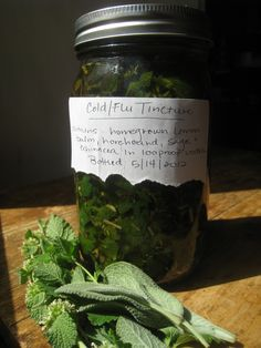 How to make a cold and flu tincture using homegrown herbs such as lemon balm, horehound, and sage #DIY #natural_health #remedies