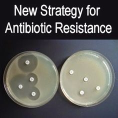 New National Strategy for Antibiotic Resistance
