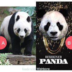 Panda or Panda Tap to vote http://sms.wishbo.ne/U1ak/6J5Q7fHJ8s