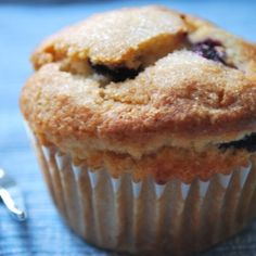 Vegan Blueberry Muffin Recipe by HollyDearborn