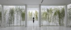 Gallery of Bamboo Forest on the Roof / V STUDIO - 2