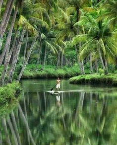 Sungai Maron Pacitan, Indonesia Photo by Mamad Wijaya Beautiful World, Beautiful Places, Places To Travel, Places To Visit, Kerala Backwaters, Kerala Travel, Sup Stand Up Paddle, Voyager Loin, Sup Yoga