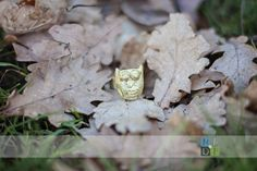 Brass Owl ring in fallen leaves, jewelry making, metal smith, Nature by Design Photography
