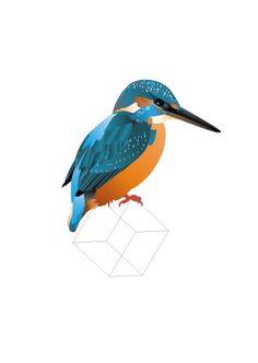 IJsvogel A5 De illustratie kan worden opgehangen of neergezet als klein kunstwerkje. Geef hem cadeau of maak er iemand anders blij mee via de post! Blanco achterkant met de naam van de vogel erop vermeld. A5 formaat, geleverd incl. envelop. Illustratie: Roosmarijn Knijnenburg.  IJsvogel | de ijsvogel heeft prachtige opvallende kleuren. De borst is oranje tot roestbruin, de  rug is prachtig blauw met in het midden een lichtblauwe bijna fluorescerende streep die hem een aantal schitterende…