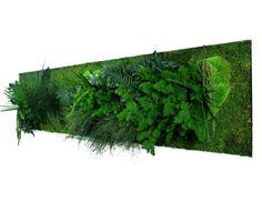 plus de 1000 id es propos de patio tableau vegetal palette sur pinterest interieur. Black Bedroom Furniture Sets. Home Design Ideas