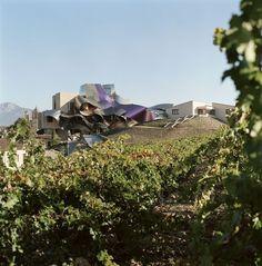 "#cantina #cellar #winery #bodegas: luxury hotel + spa vinotherapié ""Marqués de Riscal"", Elciego - Álava (La Rioja) - Spain - Design: Frank O. Gehry"