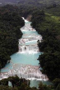 """from #Palenque, #Mexico ... """"Blue Water Waterfalls"""""""