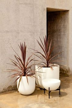 Modernica's Case Study Bullet Planter is clean and elegant in form. - My Garden Sun Decor, Ceramic Planters, Case Study Furniture, Indoor Plants, Modernica, Plant Life, Curb Appeal, Bullet Planters, Modern Planters