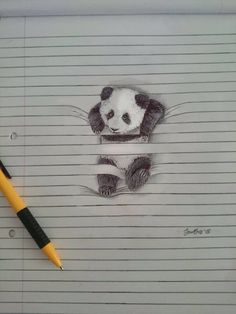 Animal Drawings Cute Animal Pencil Drawings – Fubiz Media - South-African illustrator Iantha Naicker presents us her cute animal illustrations. She uses the lines of her notebook to give a tridimensional aspect to her wo Pencil Drawings Of Animals, Amazing Drawings, Art Drawings Sketches, Amazing Art, Line Paper Drawings, Realistic Drawings Of Animals, Love Art, Painting & Drawing, 3d Art Drawing