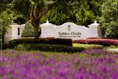 Golden Ocala Golf and Equestrian Club wedding photography, wedding photographers