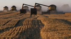 We can't talk emissions without talking agriculture - The Globe and Mail
