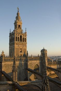 ✭ View of the Giralda tower and the rooftop of the Cathedral of Seville - Spain