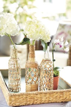 Calypso Bottles - available May 2012 at ballarddesigns.com