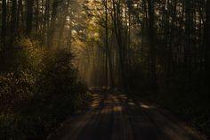 aesthetic morning backgrounds landscape youpic nature
