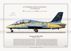 Rolls Royce, Italian Air Force, Aerial Arts, Us Air Force, Aviation Art, Air Travel, Military Aircraft, Fighter Jets, Airplanes
